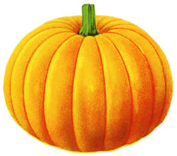 02-pumpkin_labelt.jpg