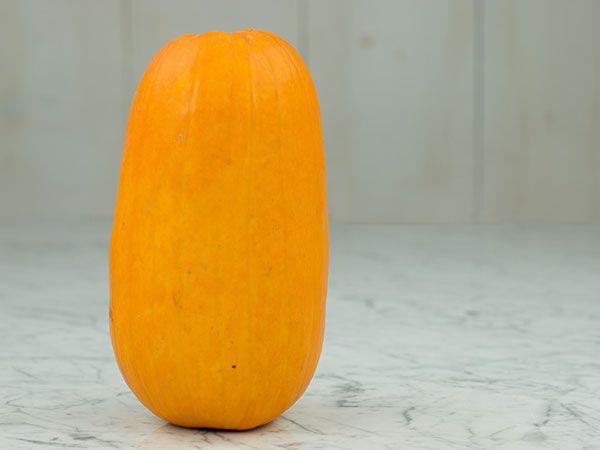 Omaha Pumpkin