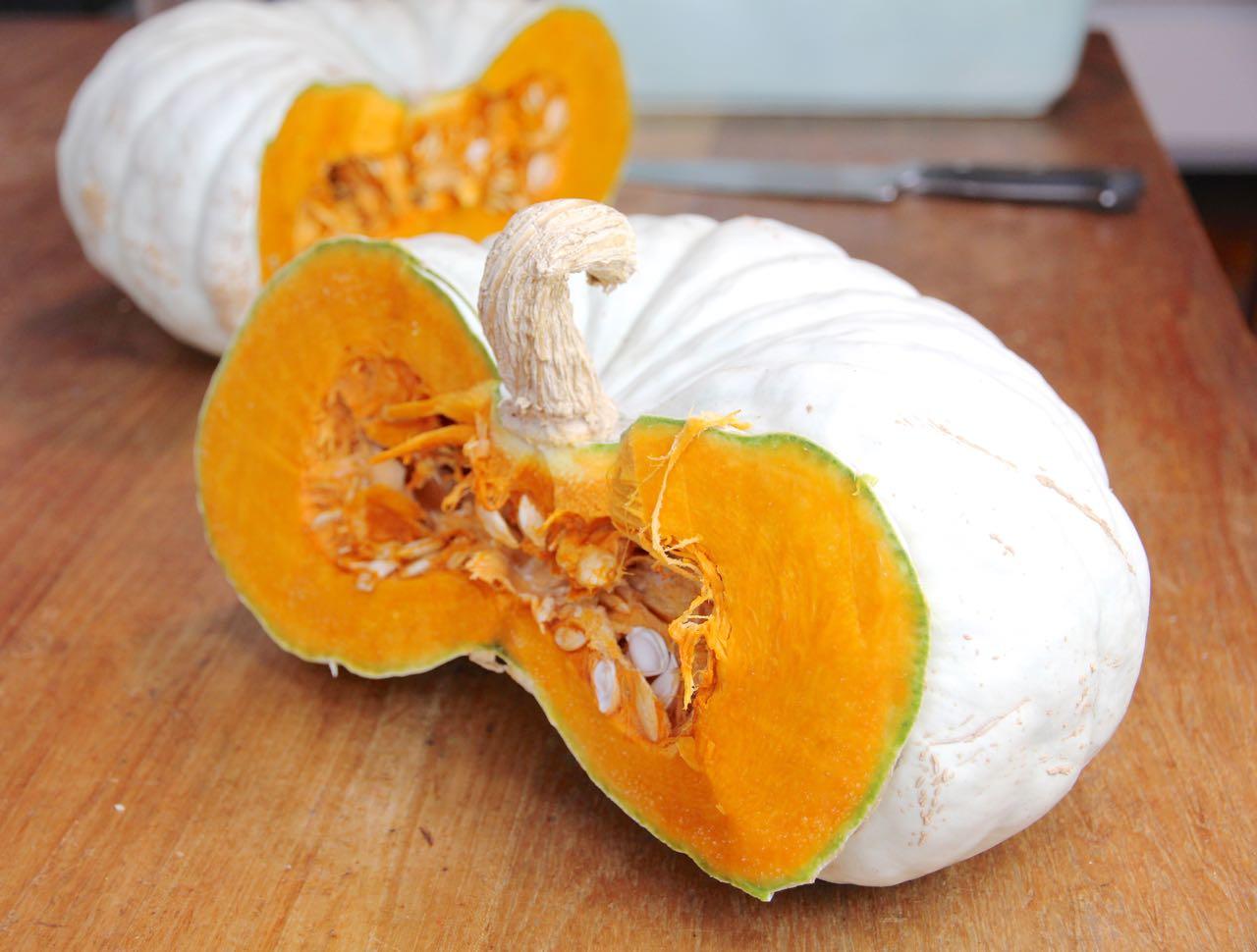 Flat White Boer Ford Pumpkin