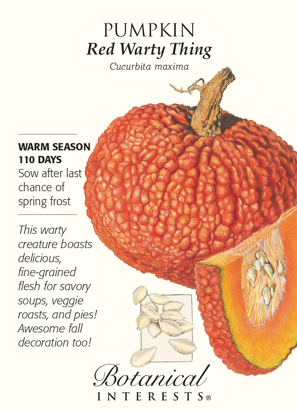 Red Warty Pumpkin