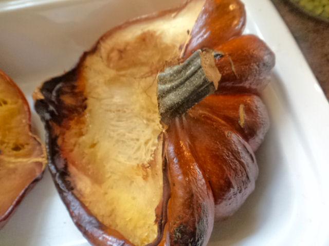over-baked acorn